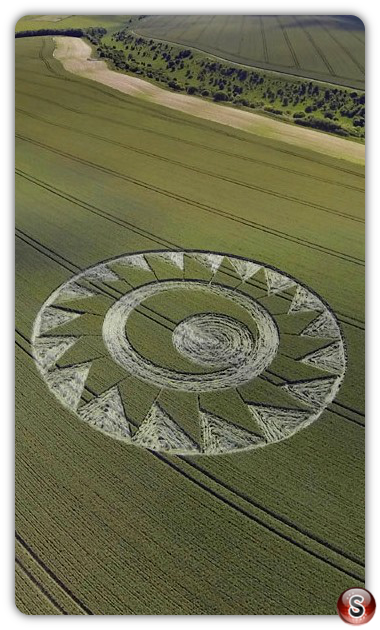 Crop circles - Cheesefoot Head Hampshire 2017