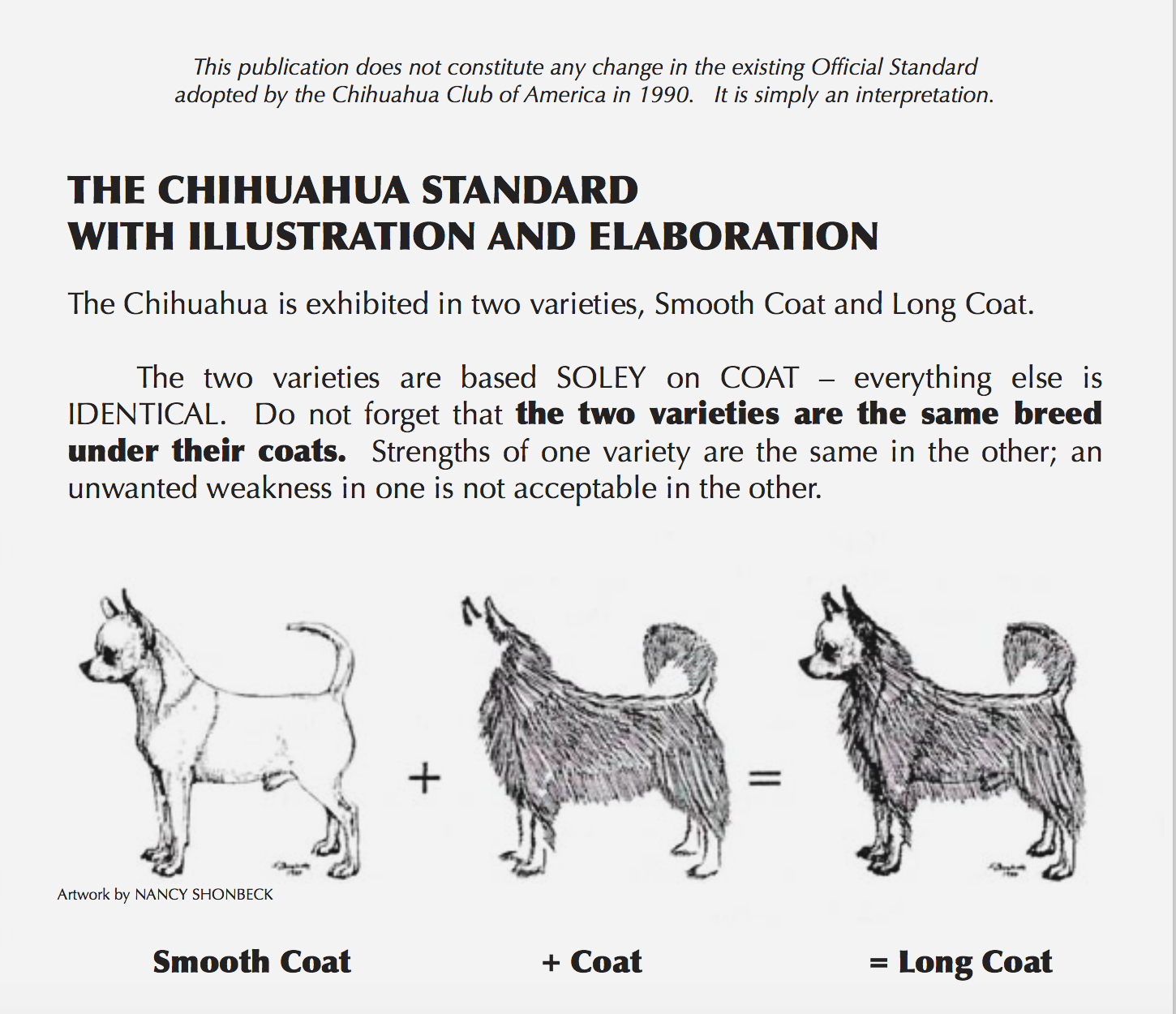 Akc Illustrated Standard For The Chihuahua Chihuahuaworld