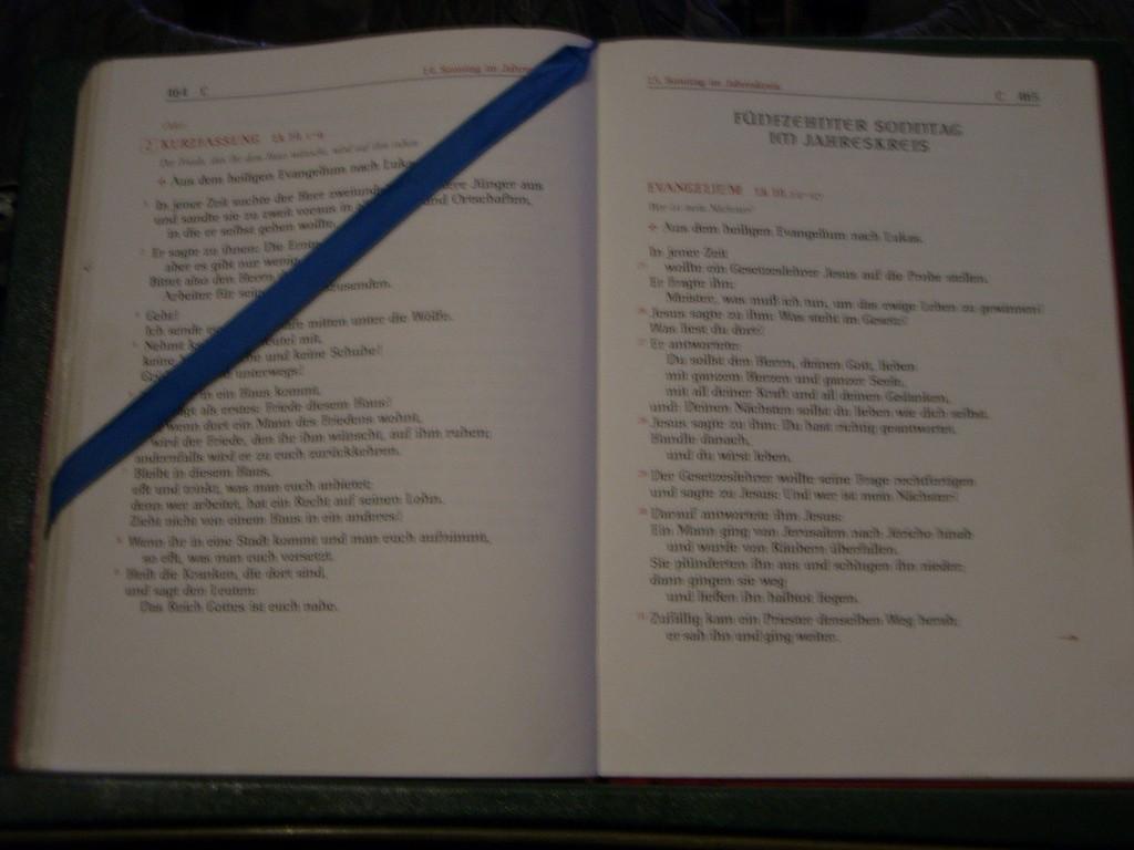 Evangelium 13. Juli 2010