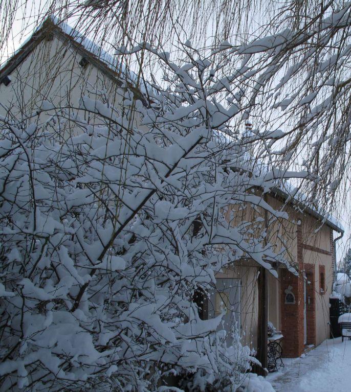 le charme d'un hiver sous la neige