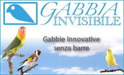 http://www.gabbiainvisibile.it/