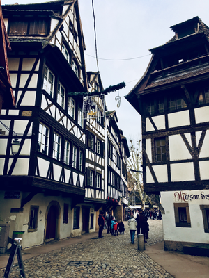 Strasburgo Francia Alsazia tipiche case a graticcio
