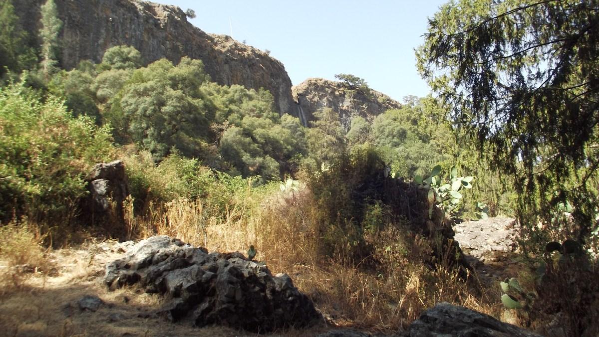 Voyage Séjour Road Trip Trek Trekking Randonnée en Ethiopie. Debre Libanos Road Trip en Ethiopie route de Debre Libanos à Addis Abeba
