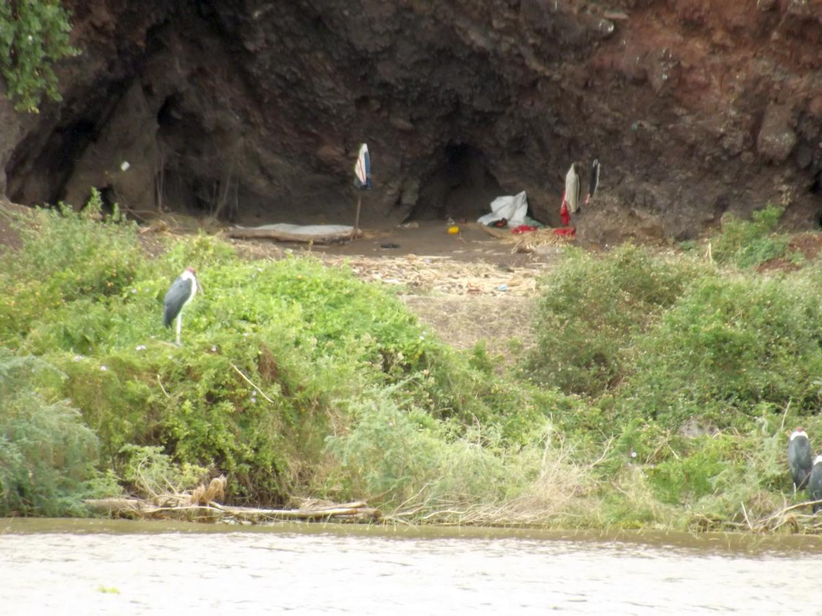 Envahit par nos déchets !!! La faune du Lac Chamo en Ethiopie. Voyage Séjour Trek Trekking Randonnée Road Trip en Ethiopie Visite de la Vallée de l'Omo en Ethiopie.