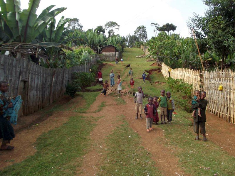 Des enfants de Dorze venus nous accueillir . Voyage Séjour Trek Trekking Randonnée Road Trip en Ethiopie Visite de la Vallée de l'Omo en Ethiopie la Ville de Dorze
