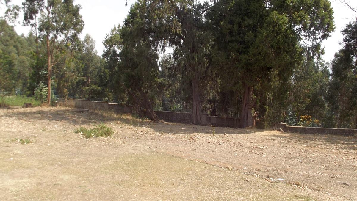 Visite du Gebbi (Palais) de Ménélik II à Entoto Addis Abeba en Ethiopie.