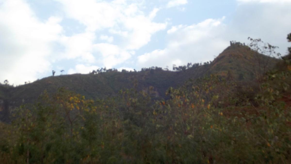 Voyage Séjour Trek Trekking Randonnée Road Trip Visite de la Région Oromia en Ethiopie La Ville de Wondo Genet