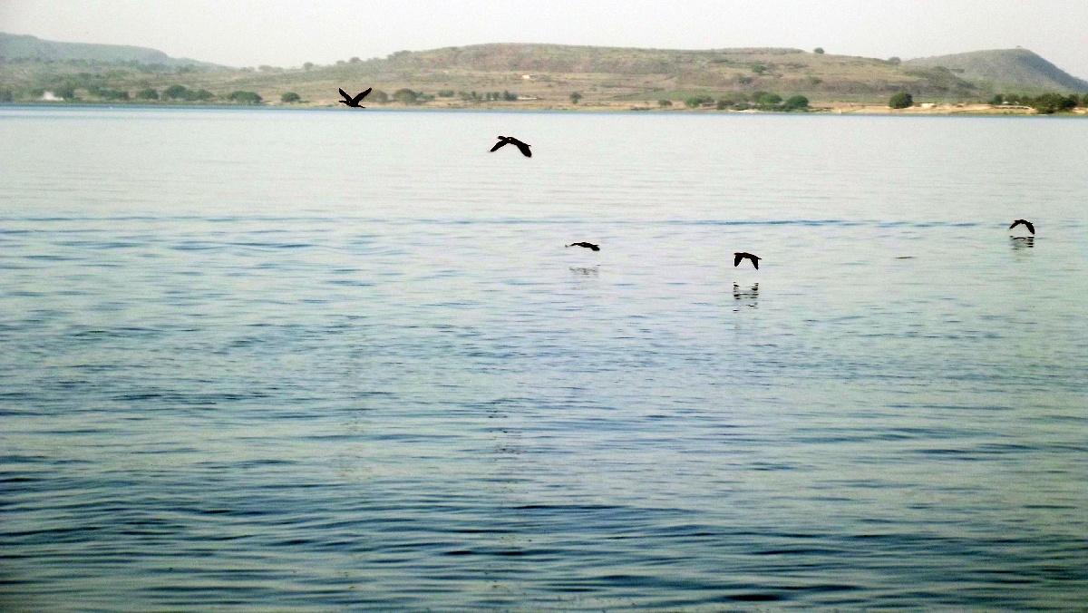 Voyage Séjour Trek Trekking Randonnée Road Trip Visite de la Région Oromia en Ethiopie, la ville Awassa . Le Lac d'Awassa