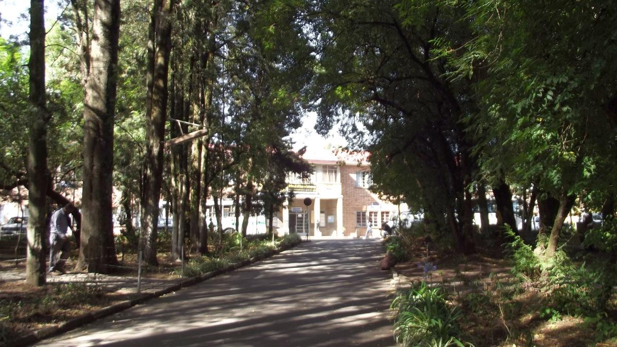 Le Parc de l'Université des Sciences. Trek, randonnée et visite d'Addis Abeba.