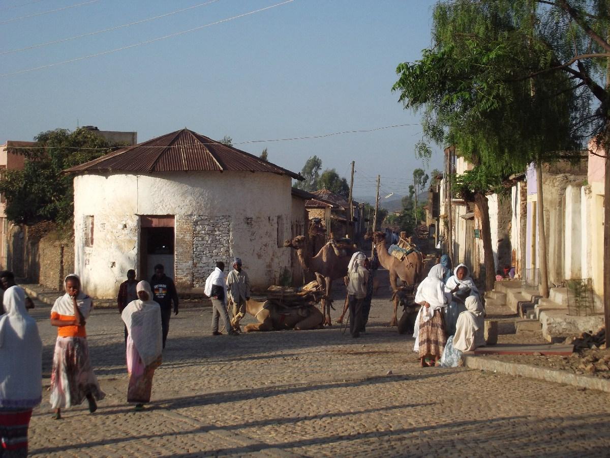 Axum, insolite. Voyage Séjour Trekking et randonnée, Road Trip en Ethiopie. Visite d'Axum en Ethiopie.