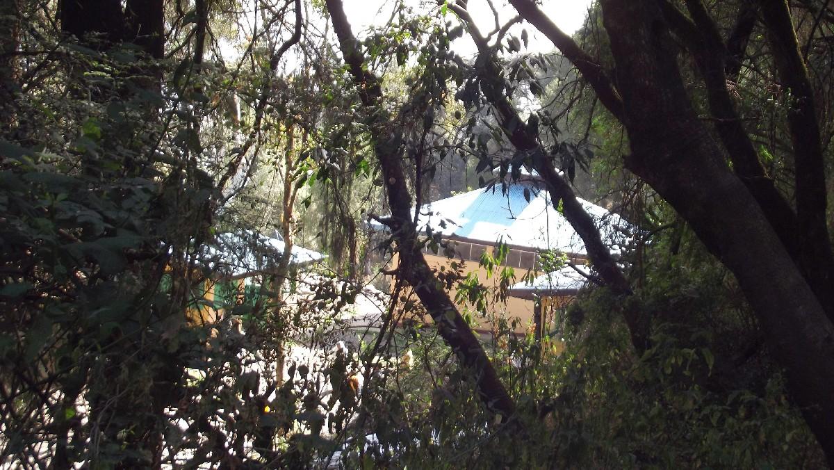 La chapelle du monastère Debre Libanos. Debre Libanos Monastery's chapel. Voyage Séjour Road Trip Trek Trekking Randonnée en Ethiopie. Debre Libanos, Le monastère de Debre Libanos