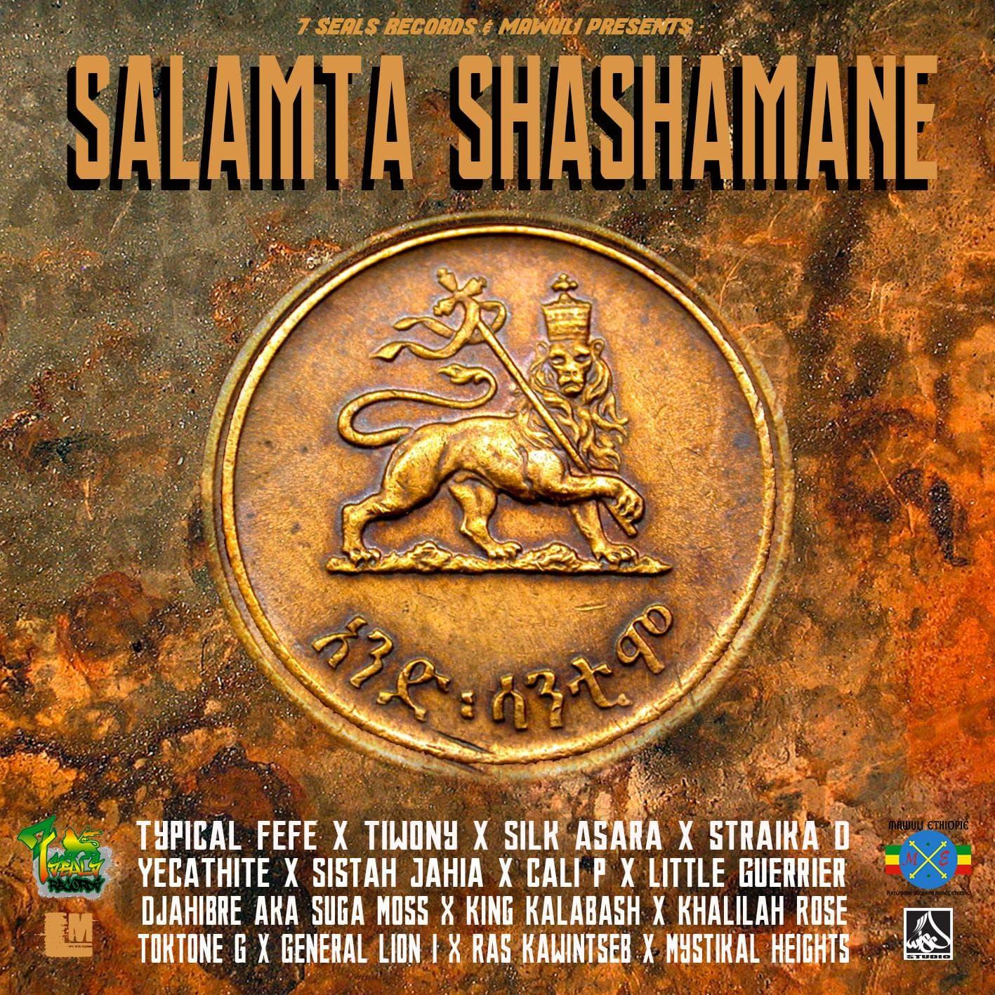 Rapport du projet Salamta Shashamane