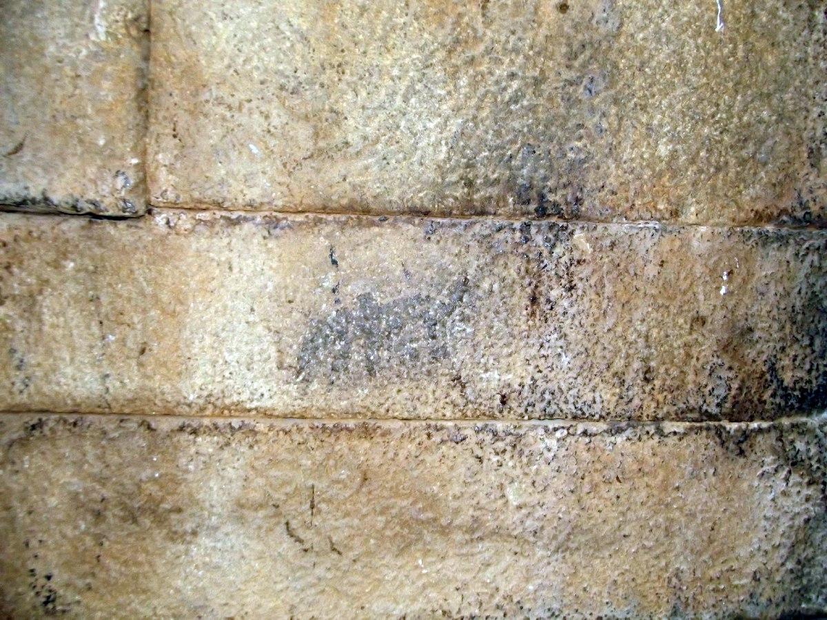 On distingue un éléphant, armoirie de Gebre Meskel (Gabra Masqal). Trek, randonnée et visite d'Axum en Ethiopie. Les Tombes du Roi Kaleb et de son fils le Roi Gebre Meskel (Gabra Masqal)