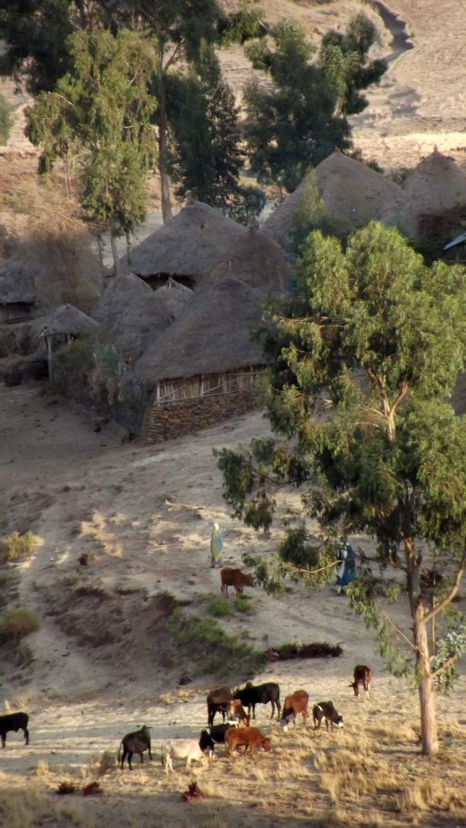 Trek around Debre Libanos Ethiopia.