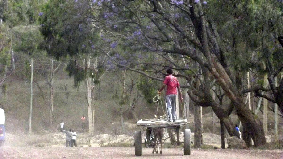 Voyage Séjour Trek Trekking Randonnée Road Trip Visite de la Région Oromia en Ethiopie, la ville Awassa