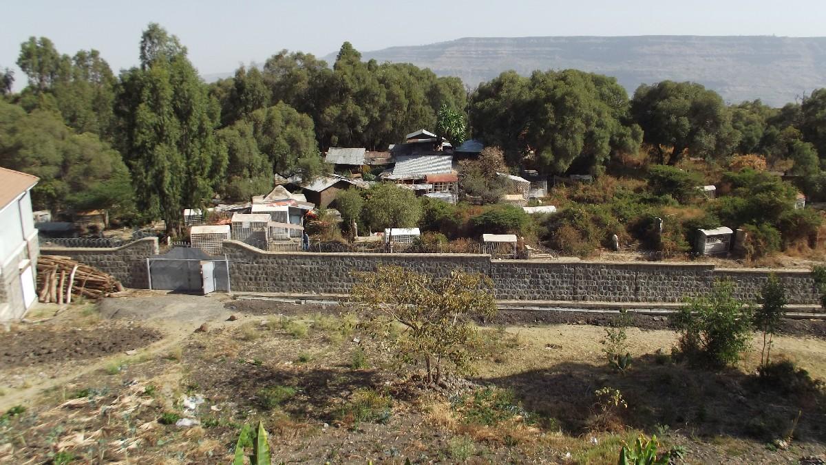 Voyage Séjour Road Trip Trek Trekking Randonnée en Ethiopie. Debre Libanos, Le monastère de Debre Libanos