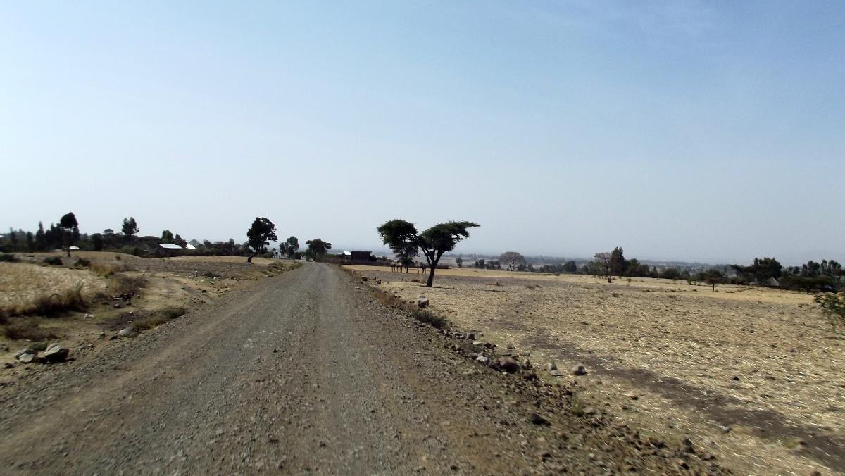 Sur la route d'Adadi Maryam. Voyage Séjour Trek et randonnée, Road trip et visite de la Région Oromia en Ethiopie.  Adadi.