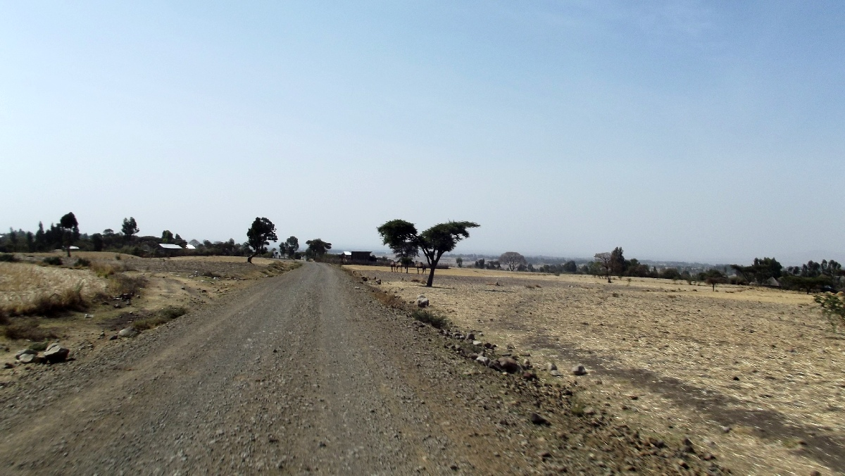 Sur la route d'Adadi Maryam. Voyage Séjour Trek Trekking Randonnée Road Trip Visite de la Région Oromia en Ethiopie.  Adadi