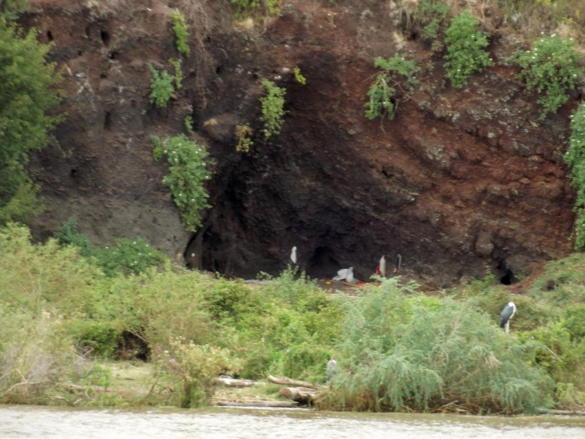 La pollution humaine ! La faune du Lac Chamo en Ethiopie. Voyage Séjour Trek Trekking Randonnée Road Trip en Ethiopie Visite de la Vallée de l'Omo en Ethiopie.