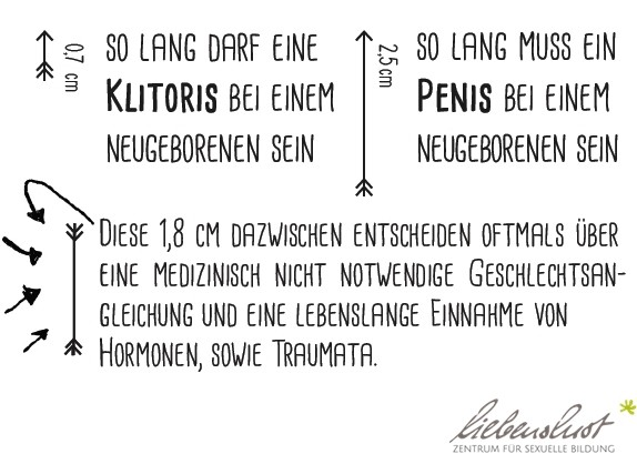 Intersexualität liebenslust.at