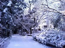 能勢川キリスト教会 冬の景色
