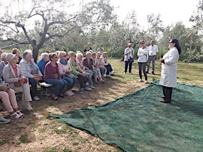 Oliven-Öl Produzentin