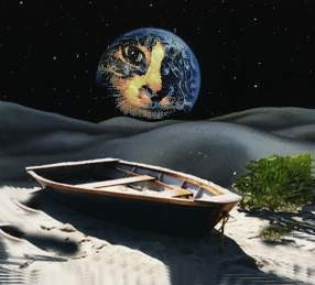 Space and boat