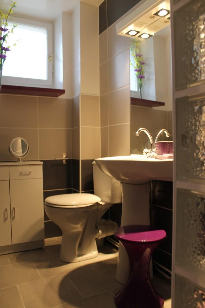 1ere Salle de bain rez de chaussée avec une douche.