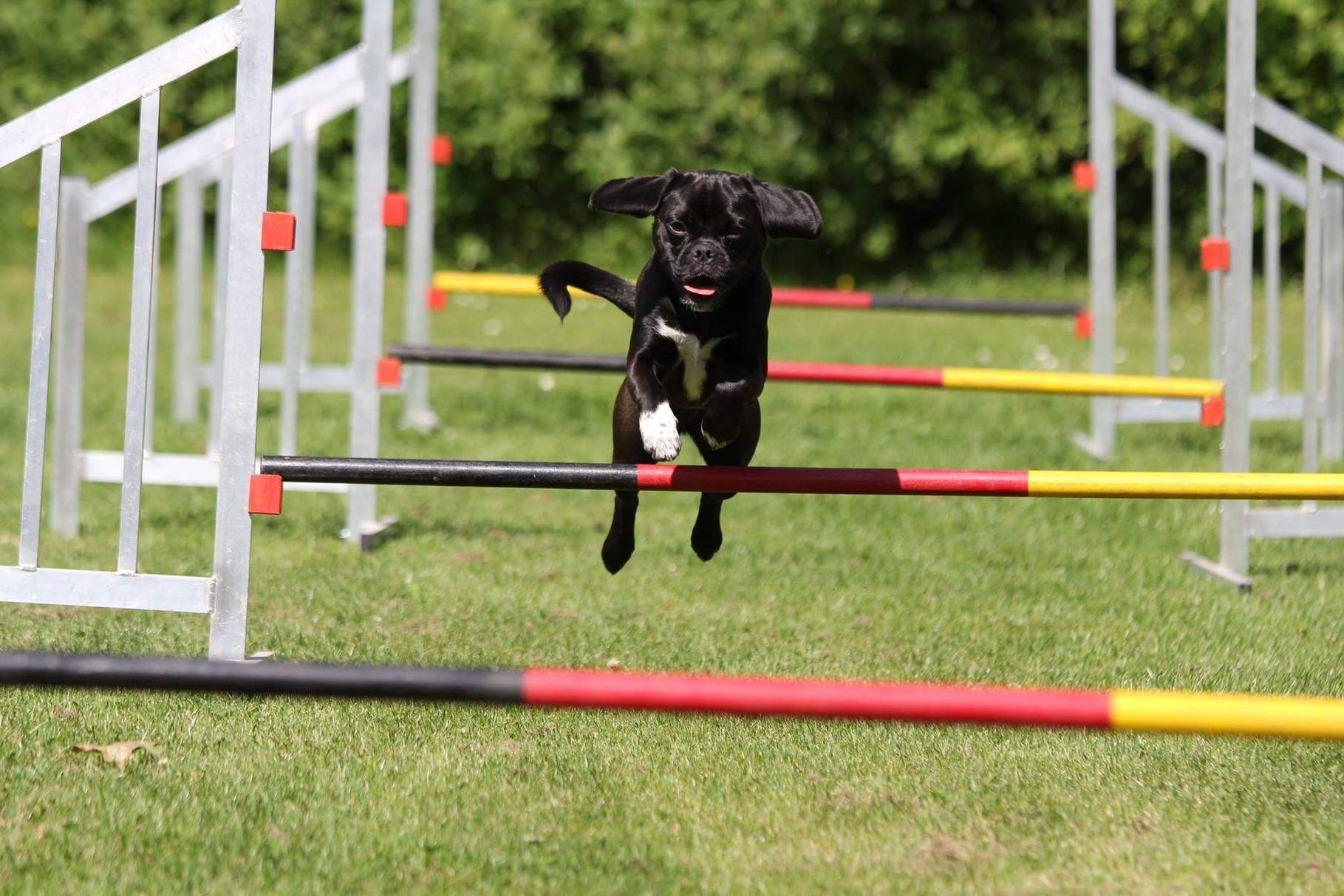 Sophie ist eine echte Sportskanone und hierbei sehr erfolgreich