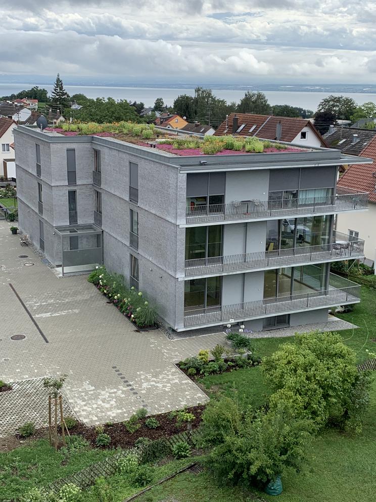 """Begrüntes Dach mit über """"1001""""Taglilien"""