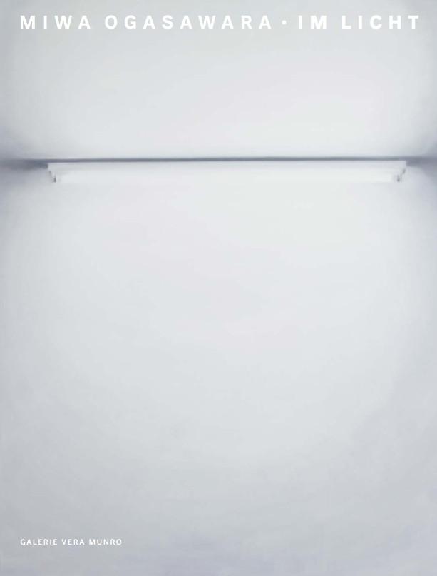 Neon 8  210x160cm 2014