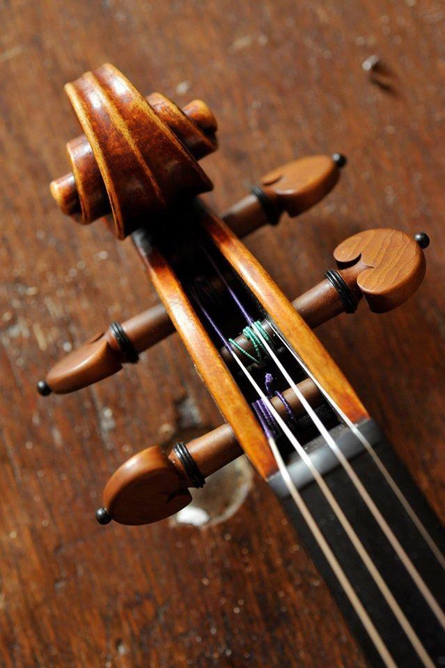 Meuwissen Violin © Rudi Van Beek, 2009