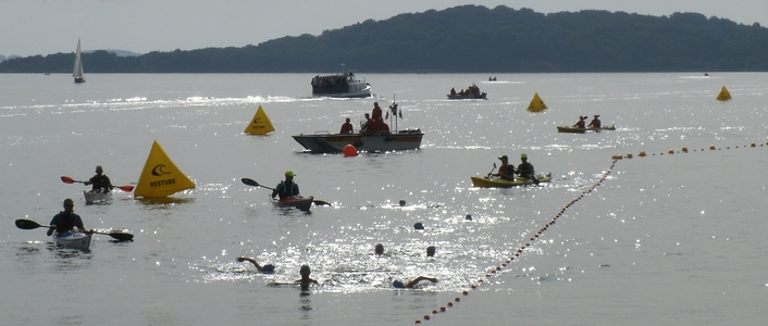 Anke Wolfert: Das Kleine Vilm-Schwimmen - ein Wettkampf für Kinder