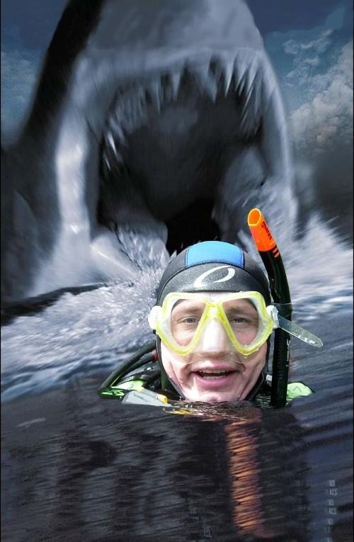 Wer hat Angst vorm Weißen Hai?