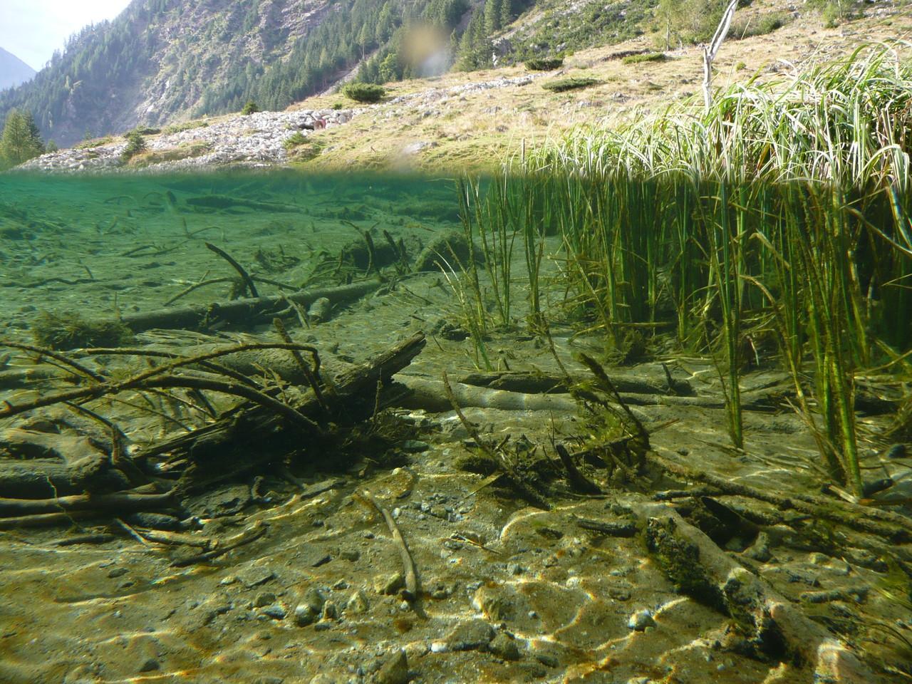 Riesachsee - Schladming/Rohrmoos       Halb-Halb
