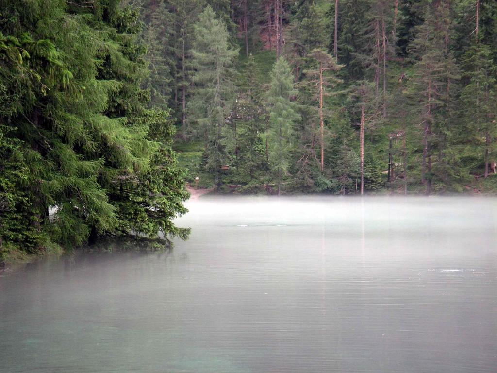 Nebel übern Grüner See