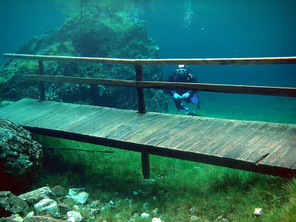 Brücke Grüner See