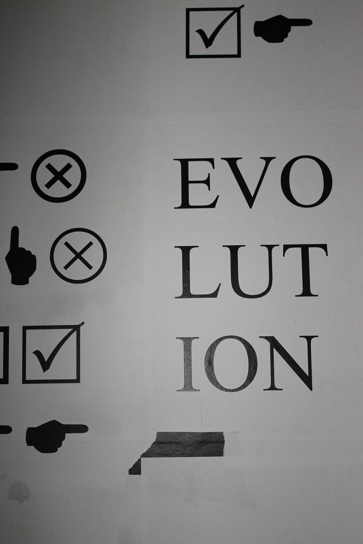 Evolution im Raum!