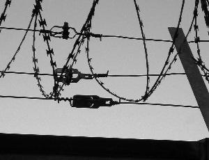 Diese Schwarzweißfotografie von Thorsten Hülsberg zeigt ein kleines Stück Mauer mit aufgesetztem Panzerstacheldraht.