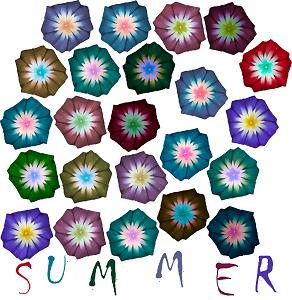 Dieses FUNbox-dÜsign von Thorsten Hülsberg zeigt über dem bunten Schriftzug SUMMER eine bunte Blütenpracht.