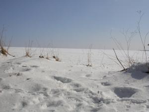 Diese Farbfotografie von Thorsten Hülsberg zeigt eine Schneelandschaft.