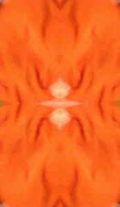 Dieses Bild von Thorsten Hülsberg im Stil der TUHpix zeigt eine weichgezeichnete, orangeweiße Stoffstruktur.