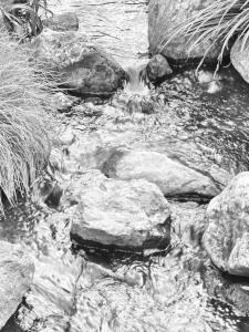 Diese Schwarzweißfotografie von Thorsten Hülsberg zeigt einen kleinen Wasserlauf.