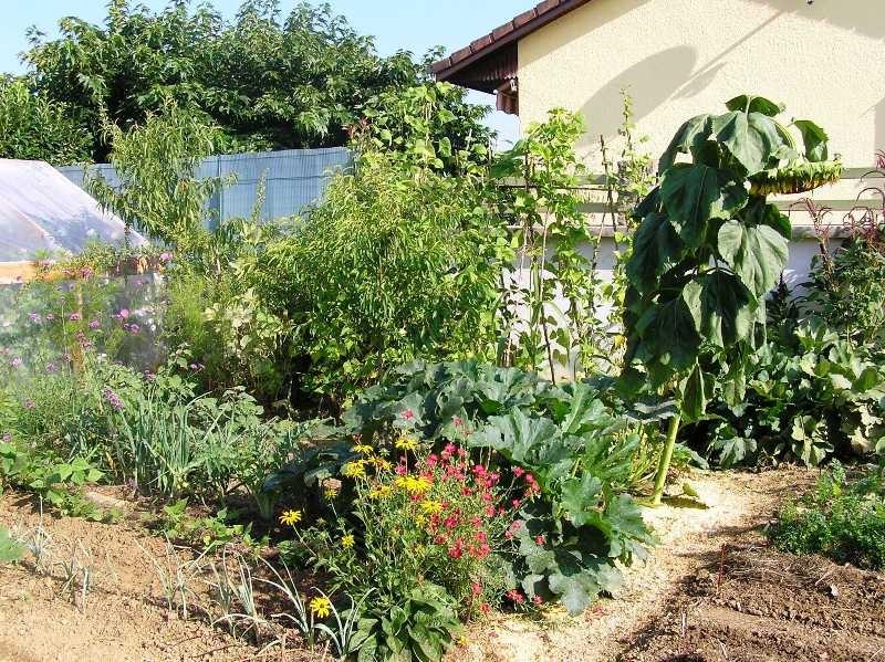 diversité au jardin