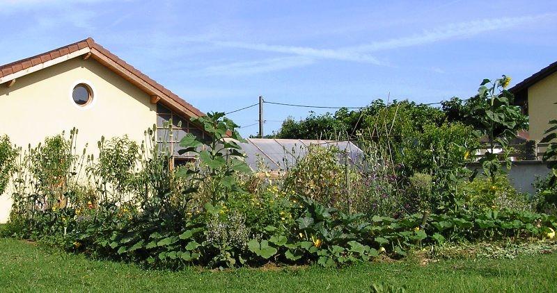 potager agroécologique