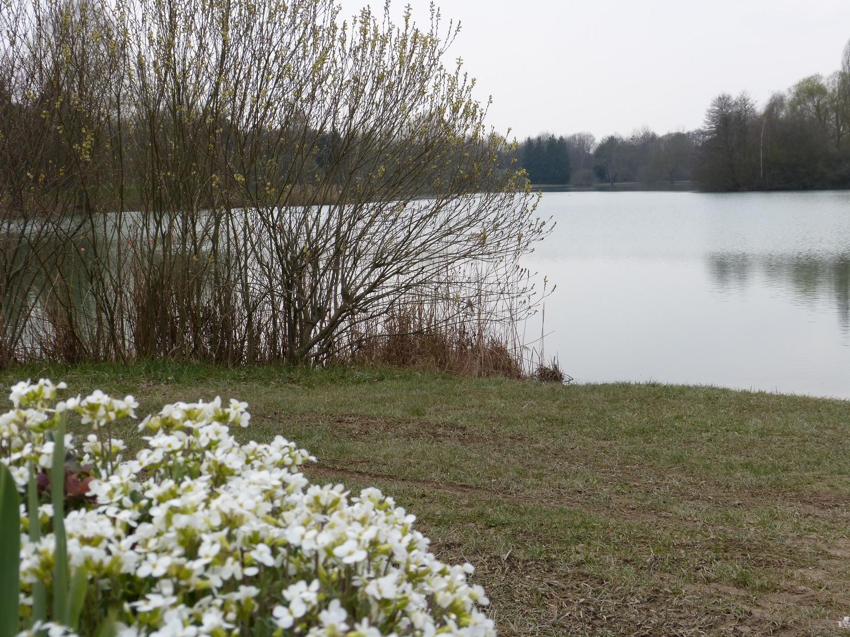 Plan d'eau à Paisy Cosdon, Pays dOthe