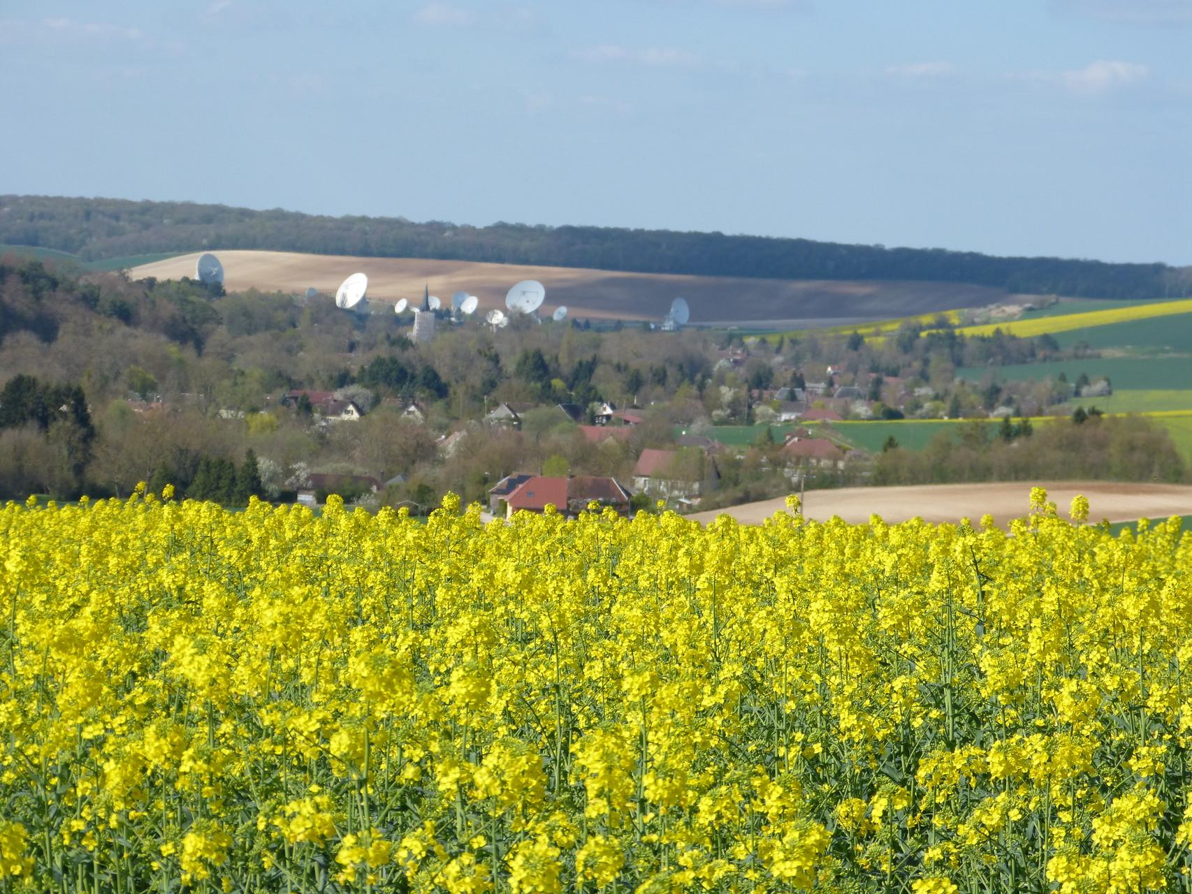 colza et vue sur le village de Bercenay en Othe