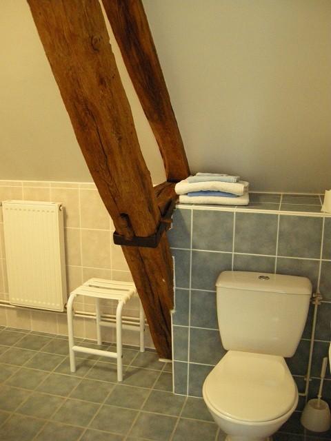Salle de bain chambre bleuet
