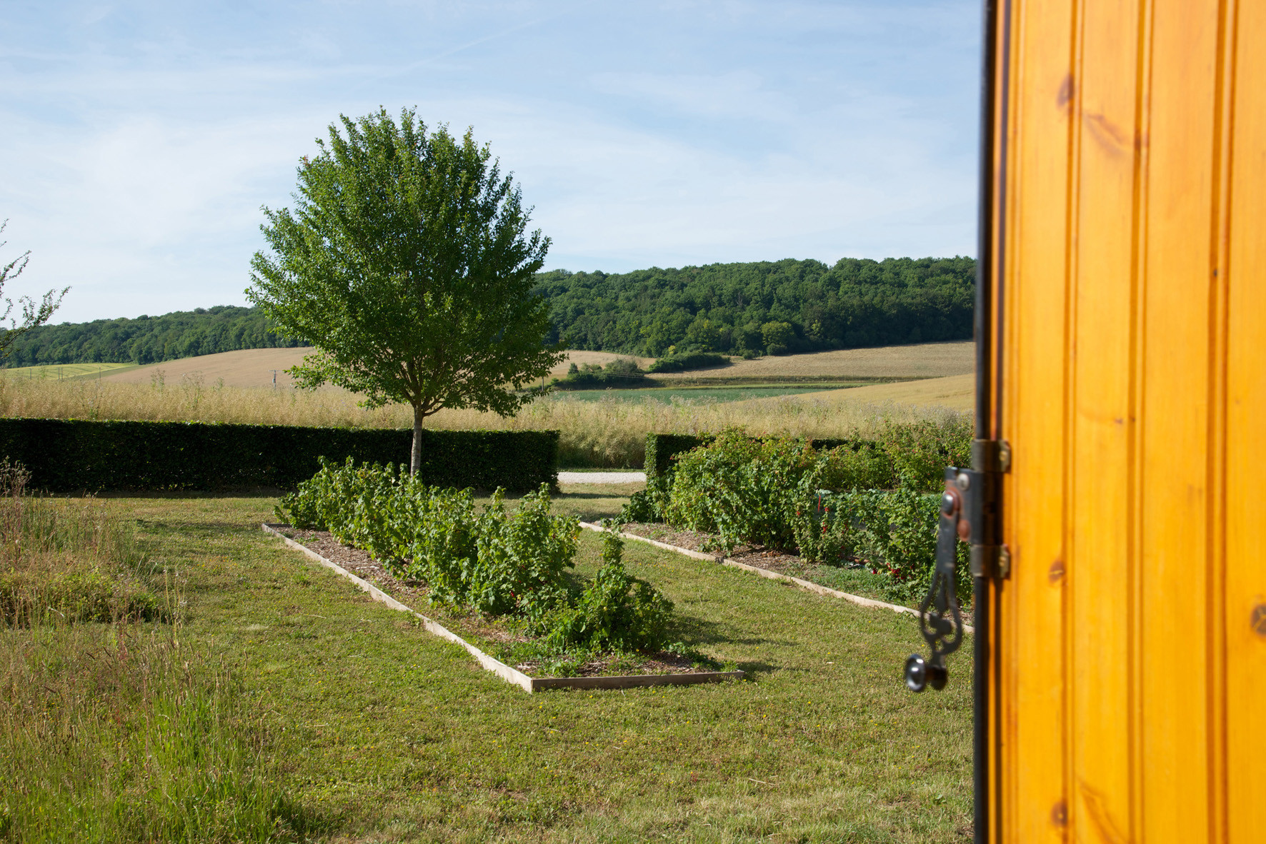 """vue sur le jardin de la chambre """"Amarante"""""""