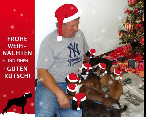 Wir wünschen allen Boxerfreunden frohe Weihnachten und einen guten Rutsch!
